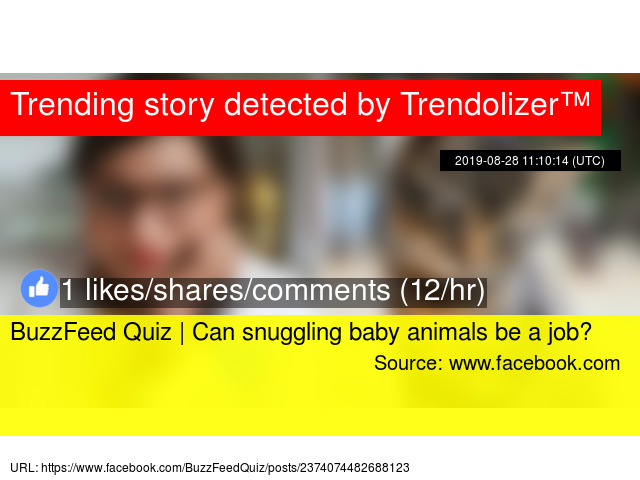 BuzzFeed Quiz | Can snuggling baby animals be a job?